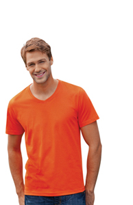 TAGLESS ORGANIC MENS V NECK T